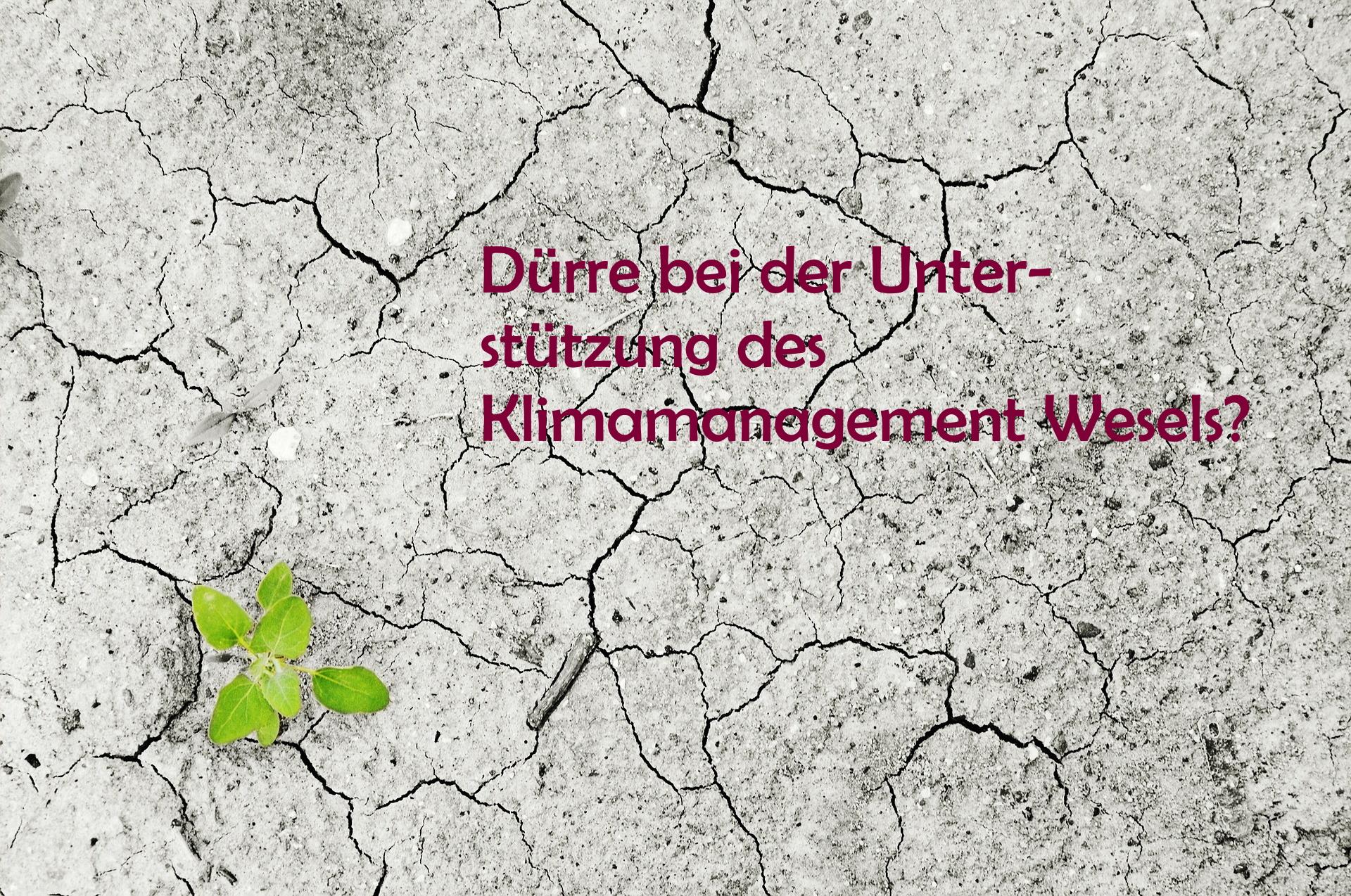 Unterstützung für Wesels Klimamanagement: WANN?